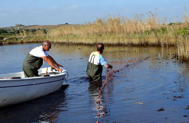 Calendario Pesca 2020.Aiuti Alla Pesca E Attivita Delle Acque Interne Scadenza 15