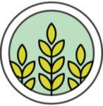 grano-demo